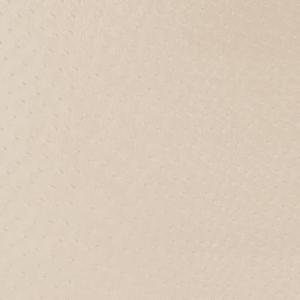 V596 Parchment