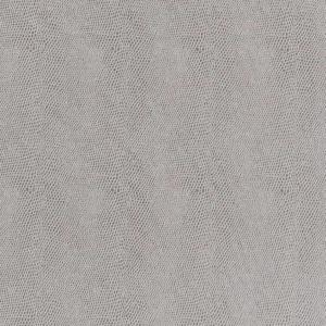 V599 Silver