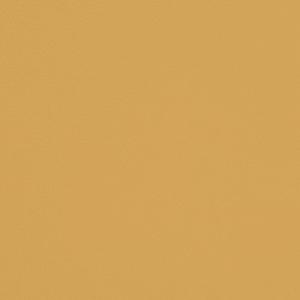V666 Canary
