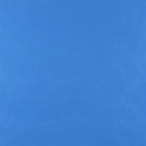 W160 Blue