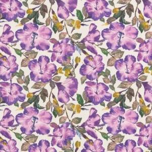 Y425 Violet
