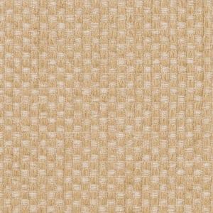 Y466 Wheat