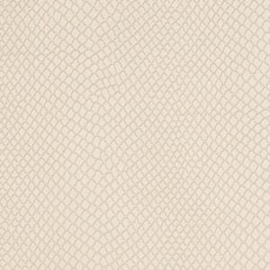 V719 Lace