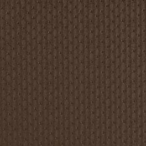 V758 Cocoa